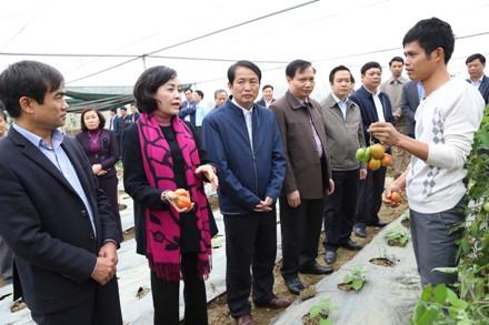Đồng chí Bí thư Tỉnh ủy thăm mô hình tại huyện Gia Viễn.