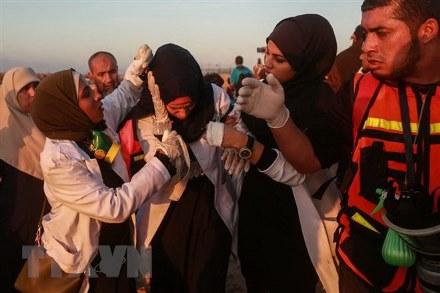 Người biểu tình Palestine bị thương trong xung đột với binh sỹ Israel ở phía bắc Dải Gaza ngày 19/11/2018.
